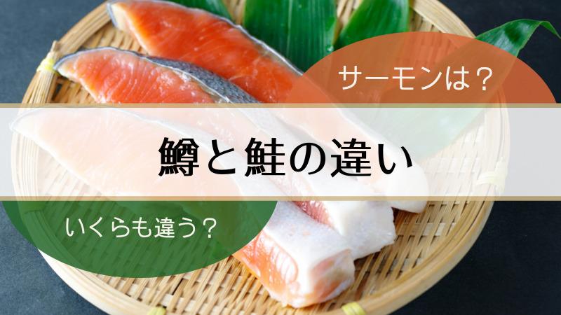 鱒,鮭,違い